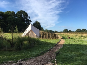 Glamping site at Knepp