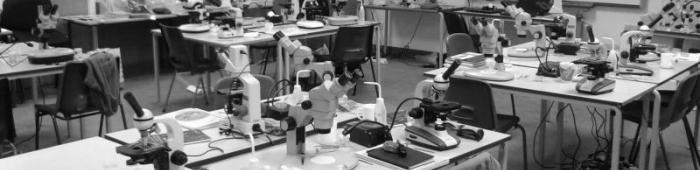 A microscope-heavy classroom at FSC Preston Montford!