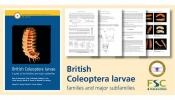 Front cover of RES Handbook to British Coleoptera larva